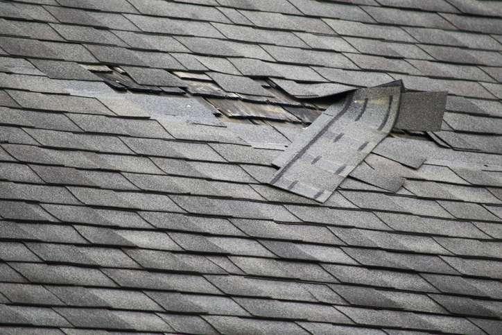 débris sur toiture